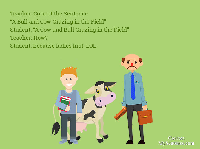 funny english grammar stories you can avail
